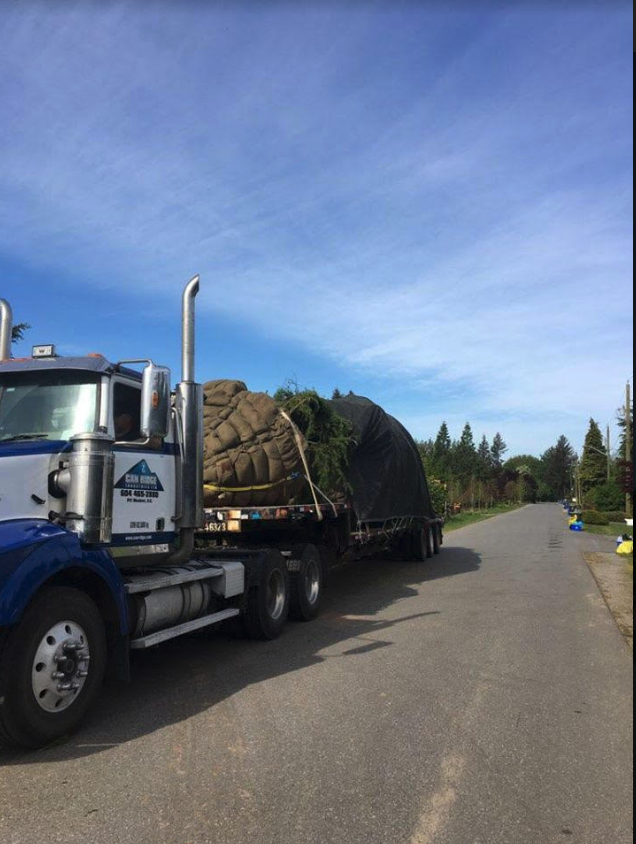 heavy haul trees wide load west coast oversized transportation BC Can Ridge Industries